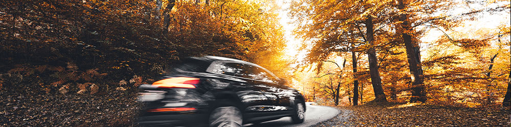 The Truth About Fall Driving Safety, Youngs Insurance, Ontario