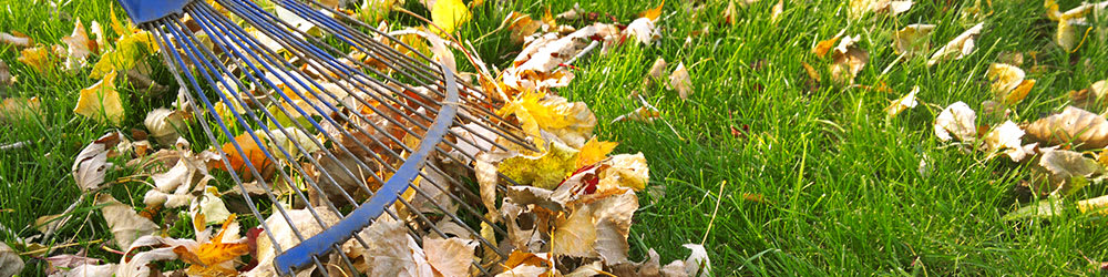 Helpful Fall Property Maintenance Tips, Youngs Insurance, Ontario