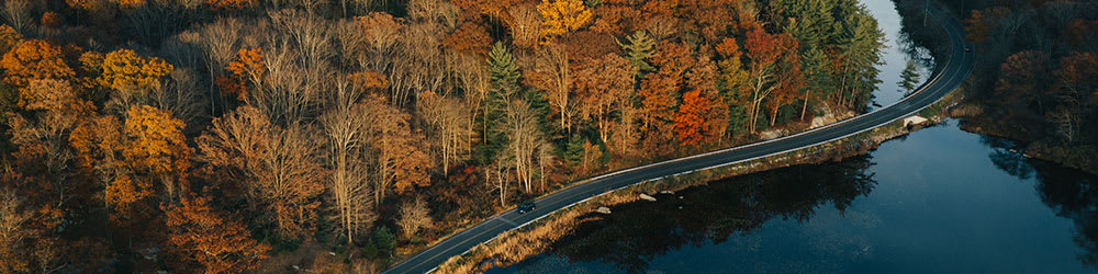 Fall in Love With These Stunning Fall Drives, Youngs Insurance, Ontario